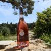 rosé AOP Luberon 2014