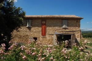07 Huile d'olive artisanale au moulin du Domaine Les Perpetus