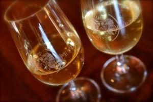 Dégustation de vin au Domaine Les Perpetus