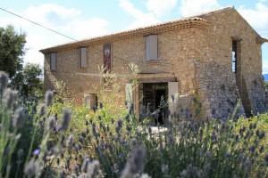 Domaine Les Perpetus (1)