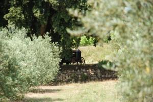 Domaine Les Perpetus
