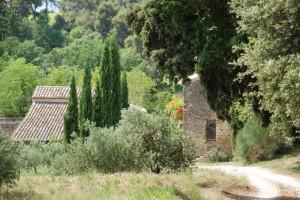 Séjour en Provence au Domaine Les Perpetus (2)