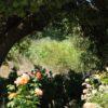 La biodiversité dans le Luberon